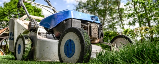 Did You Know That Mowing the Lawn Can Lead to a Cure for Cancer?